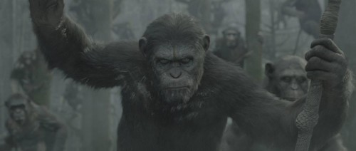 dwan of the planet of the apes trailer international criticsight