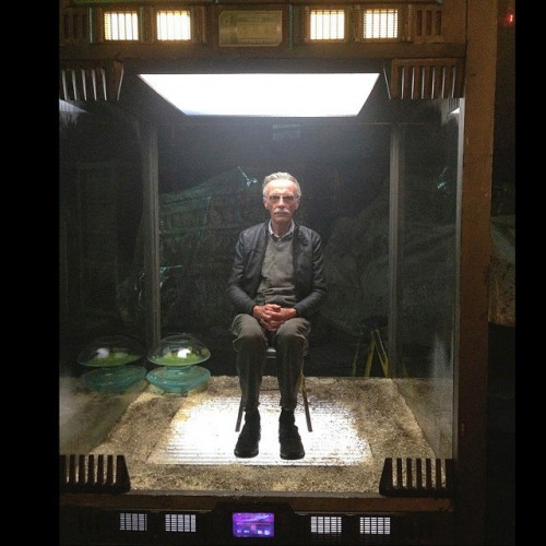 Stan Lee cameo guardianes de la galaxia original prohibido criticsight